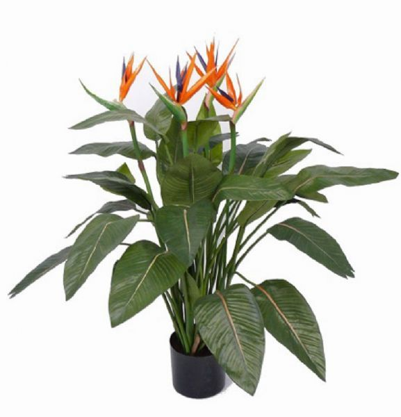 Perfect Red Hot Plants - Artificial Plant Supplier in Heysham, Morecambe (UK) FA58