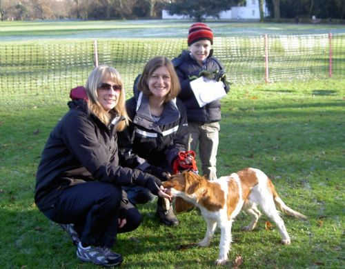 Dog Training Twickenham