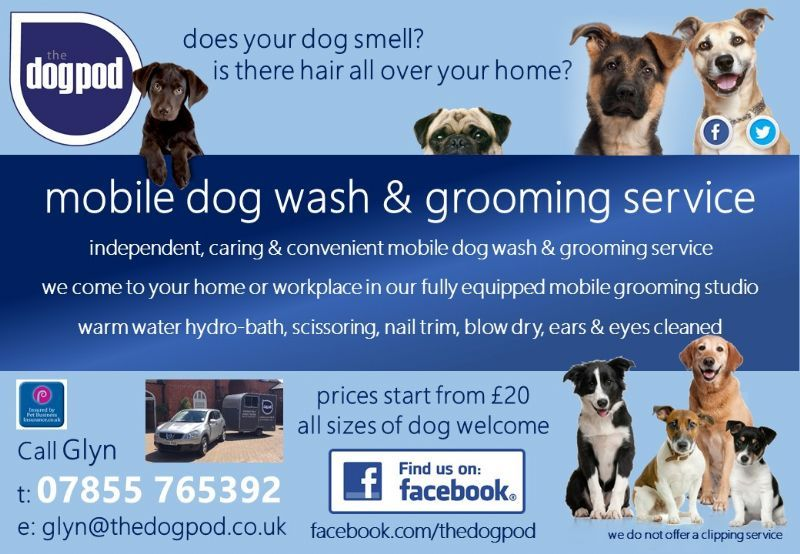 The Dog Pod Dog Grooming Company In Sutton Courtenay