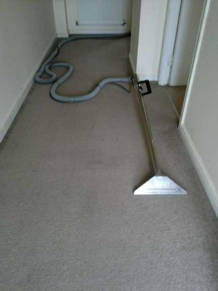 Bee S Knees Carpet And Upholstery Cleaning Wrexham 30