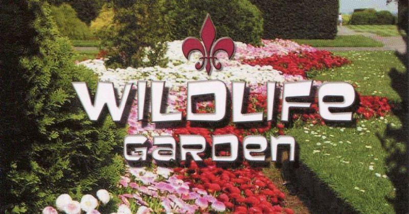 Wildlife Garden Design & Maintenance, London | 1 review ...