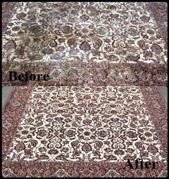 Majestic Rug Cleaning And Repair Services