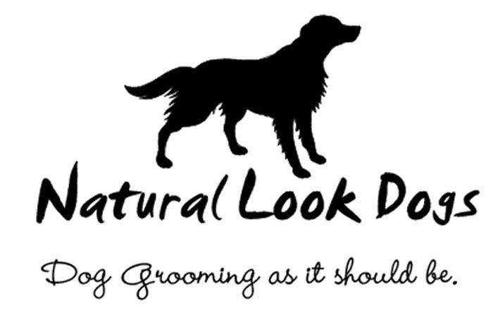 Dog Grooming Green Lanes