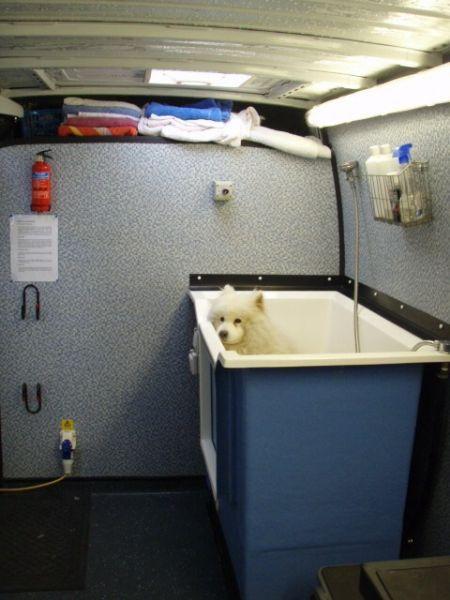 Dog Rescue Tamworth