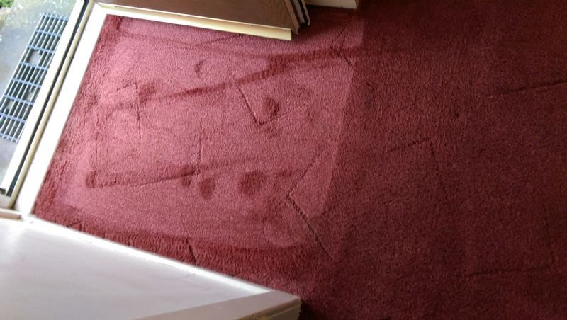 Sw Carpet Care Carpet Cleaning Company In Perth Uk