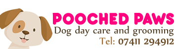 Dog Day Care West Sussex