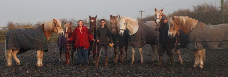 Stickney Riding Centre Boston 4 Reviews Horse Riding