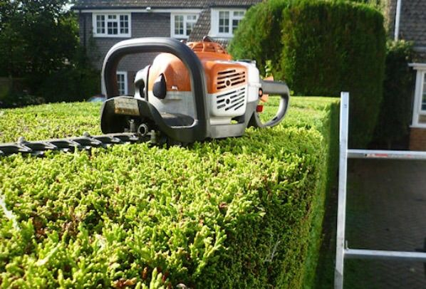 Contractor insured but not licensed for lawn