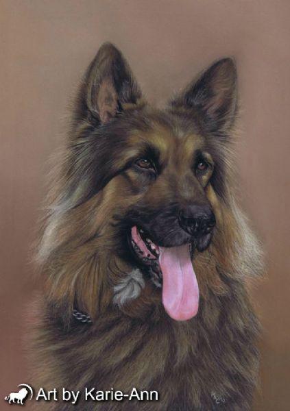 Art By Karie Ann Ross On Wye 12 Reviews Pet Portrait