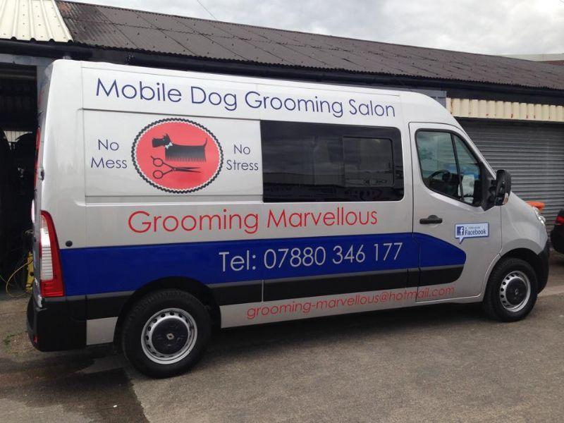 Grooming Marvellous Dog Grooming
