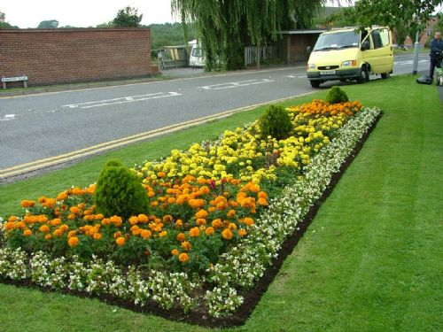 Bloomin Gardens And Landscapes Ltd Ground Maintenance