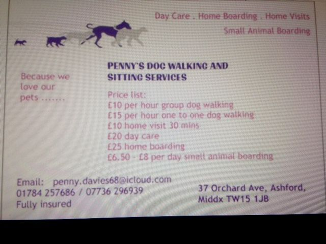 Penny S Dog Walking And Sitting Service Ashford Pet Walker And
