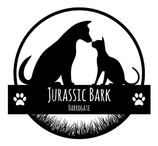 Jurassic Bark Dog Walking