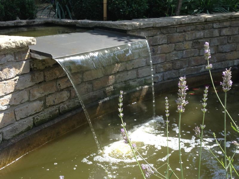 H2o plants aquatic and environmental services pond and for Garden pond builders essex